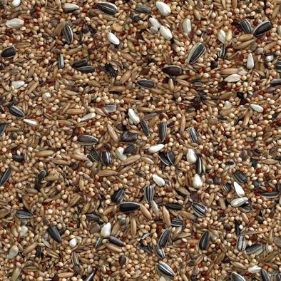 Bucktons Cockatiel Mix Seed