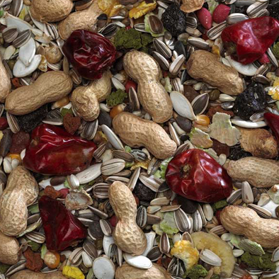 Bucktons Elite Parrot Seed