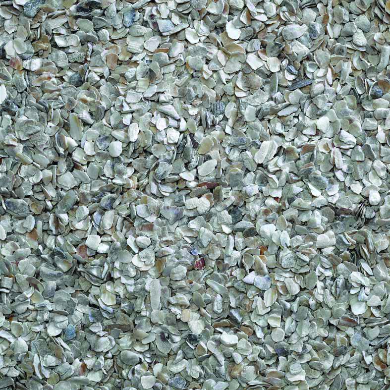Bucktons Hen Oyster Shell