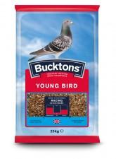 Bucktons-Pigeon-Young-Bird-20kg