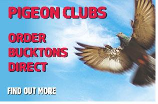 Order Bucktons Pigeon Corn Direct