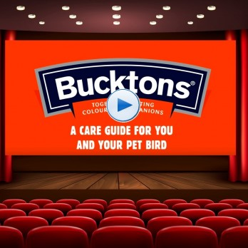 Bucktons Pet Bird Video Care Guides