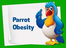 parrot obesity